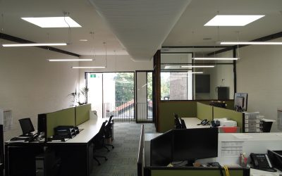 SFN moves into new office